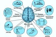 Як розвинути мозок, вправи для мозку